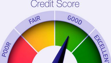 Basic Credit Score