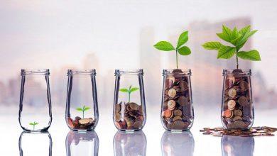 Creative Investment