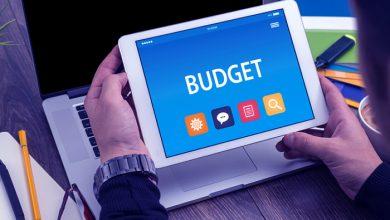 Analysis of Budget Plan